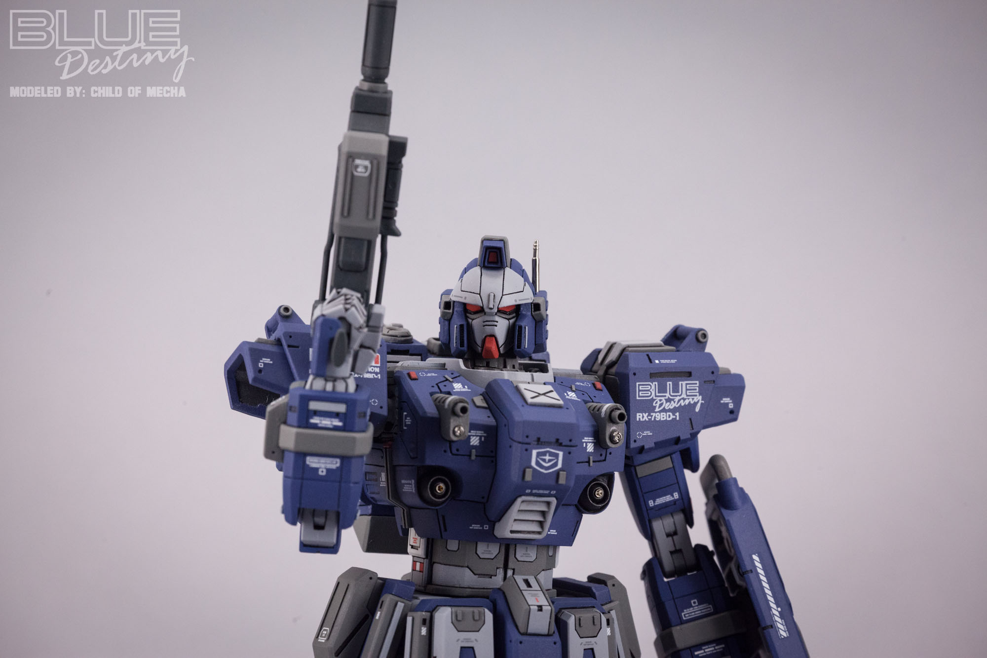 Blue Destiny Refurbished (26).jpg