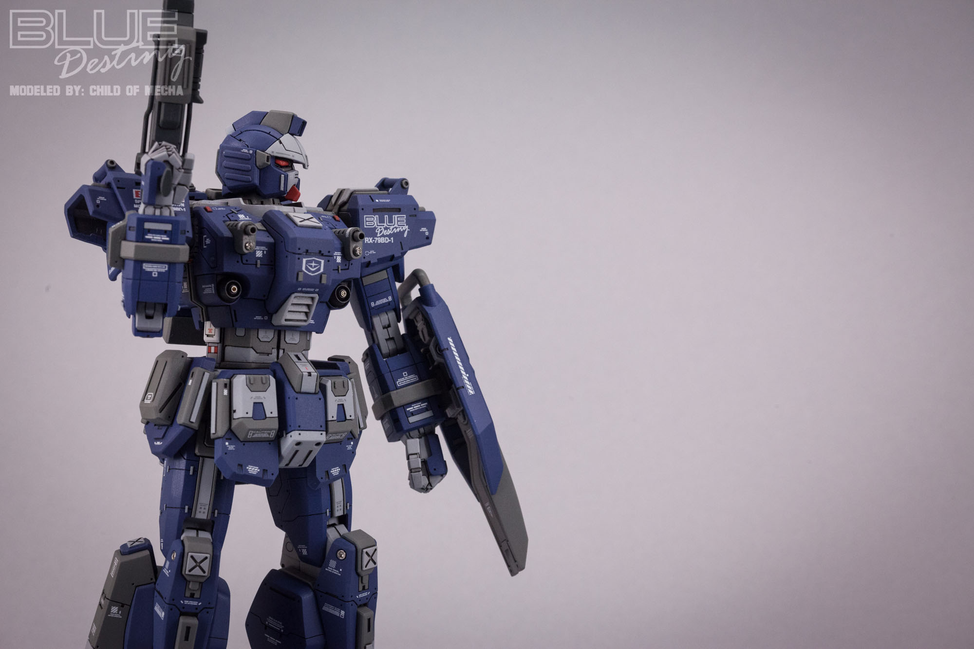Blue Destiny Refurbished (29).jpg