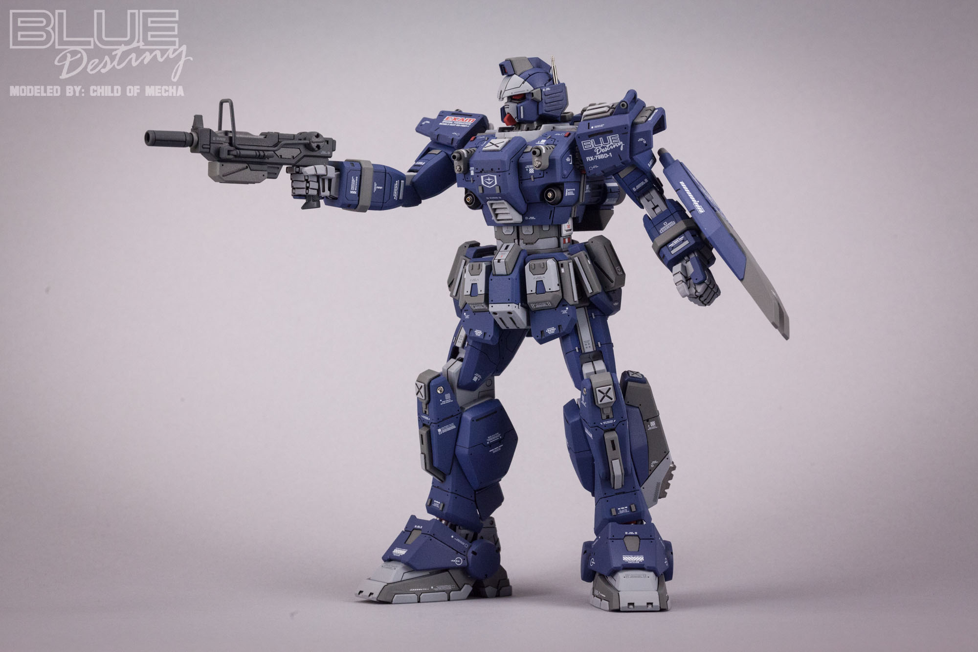 Blue Destiny Refurbished (31).jpg