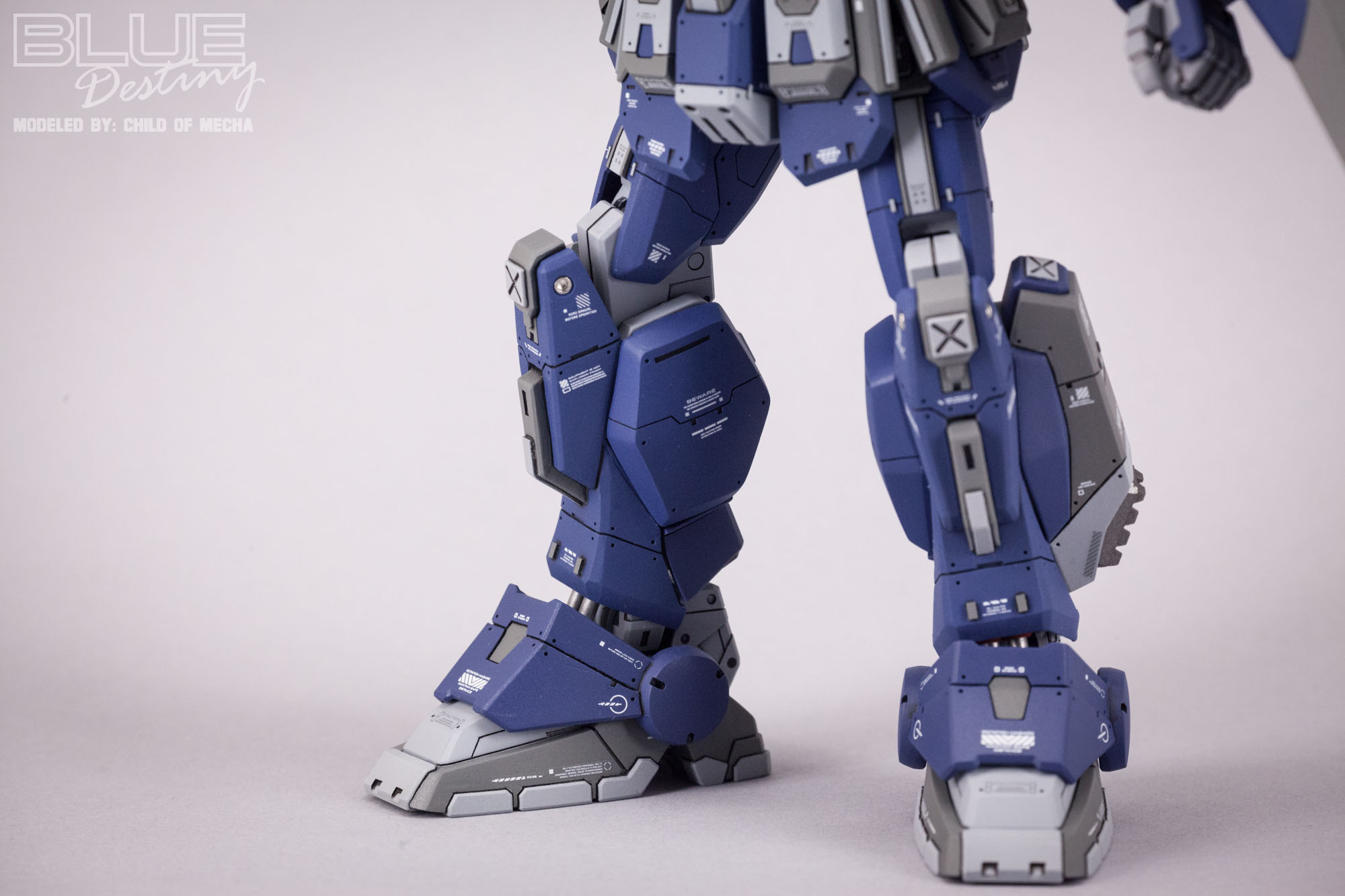 Blue Destiny Refurbished (38).jpg