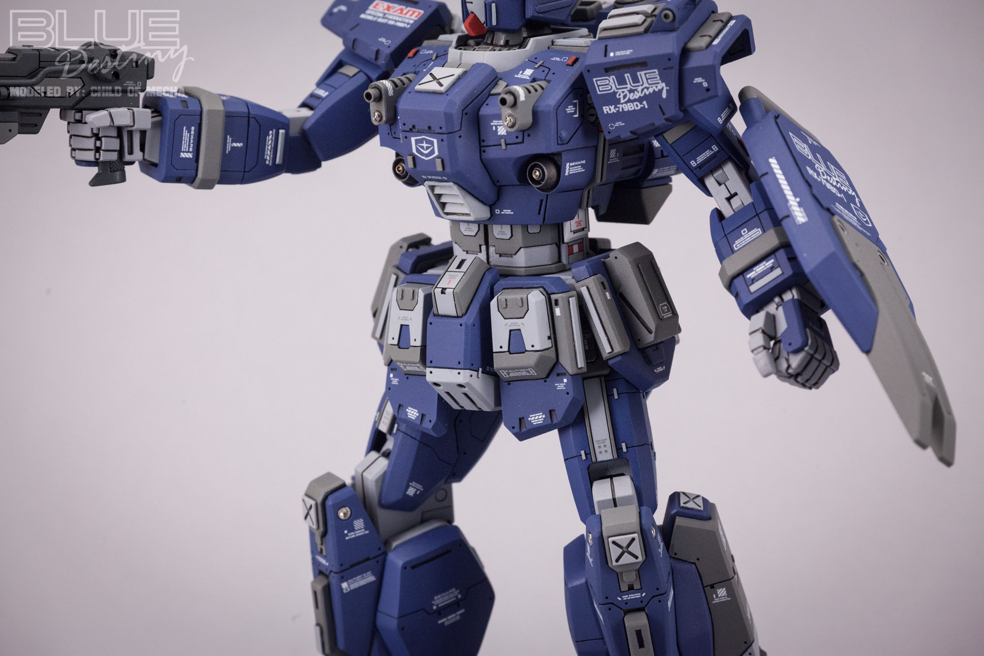 Blue Destiny Refurbished (41).jpg