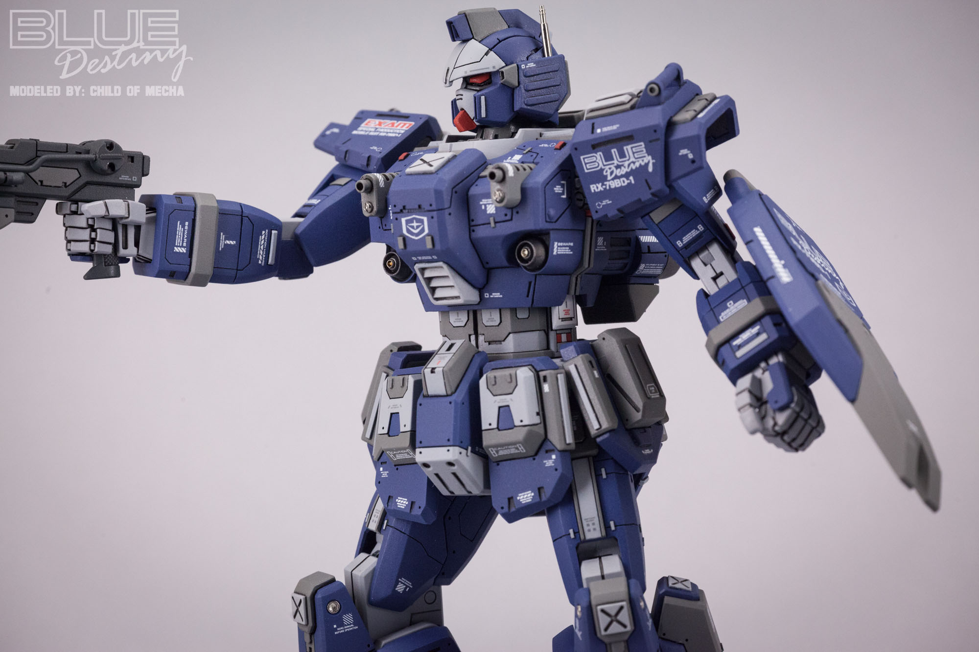 Blue Destiny Refurbished (42).jpg