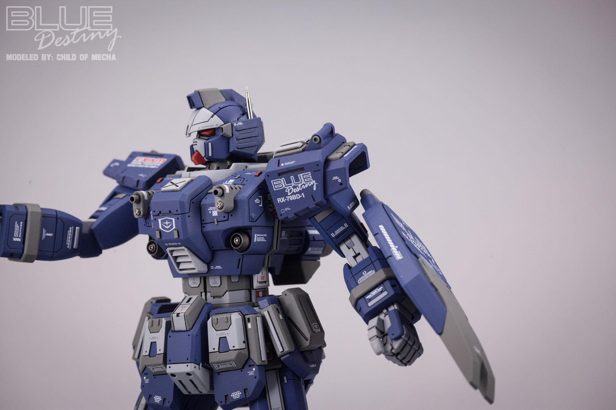 Blue Destiny Refurbished (43).jpg