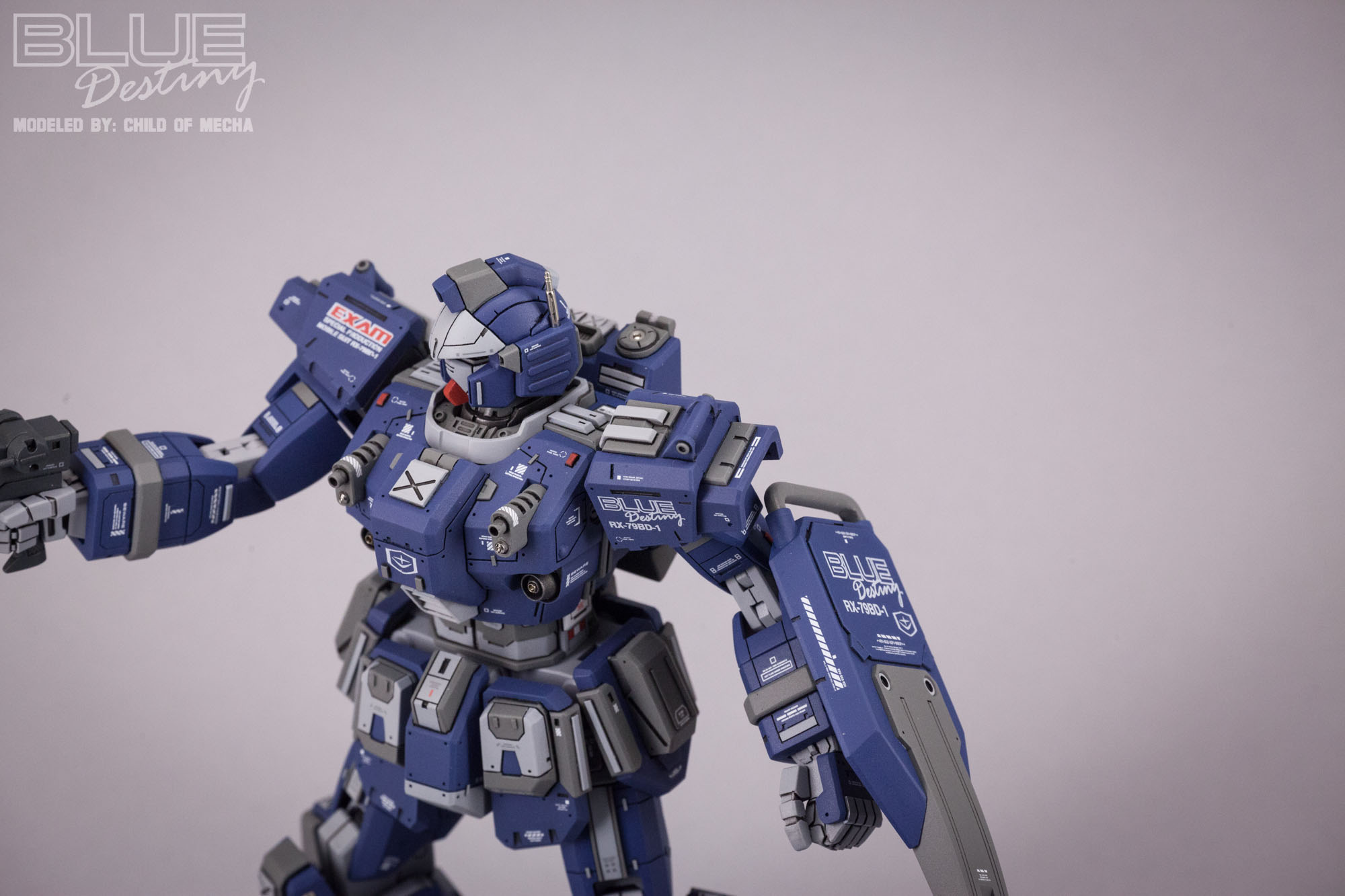 Blue Destiny Refurbished (47).jpg
