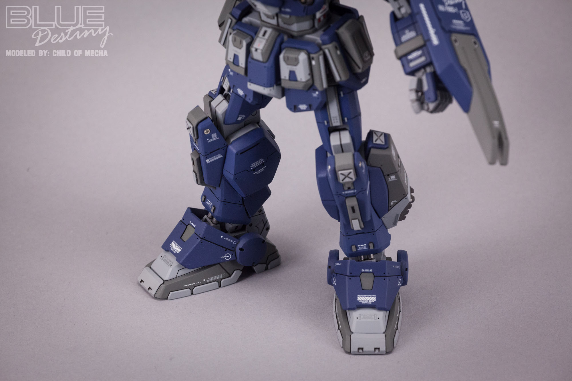 Blue Destiny Refurbished (49).jpg