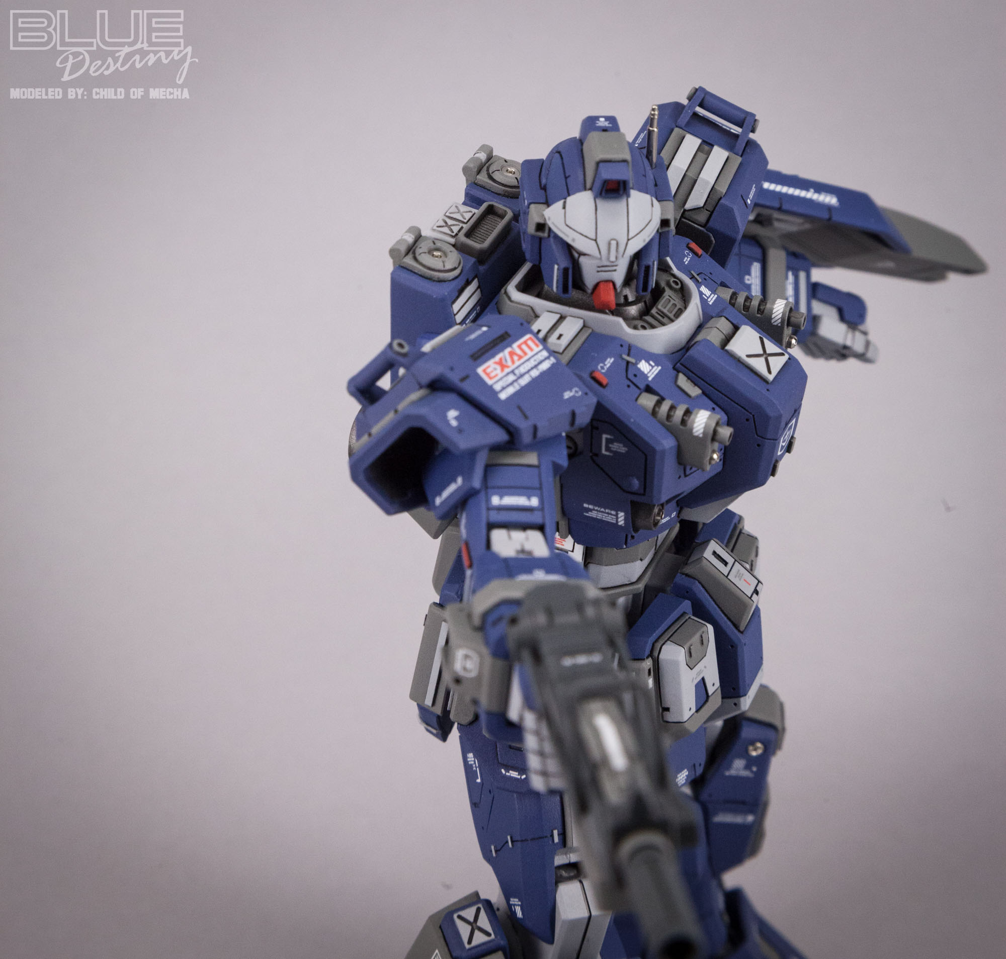 Blue Destiny Refurbished (59).jpg