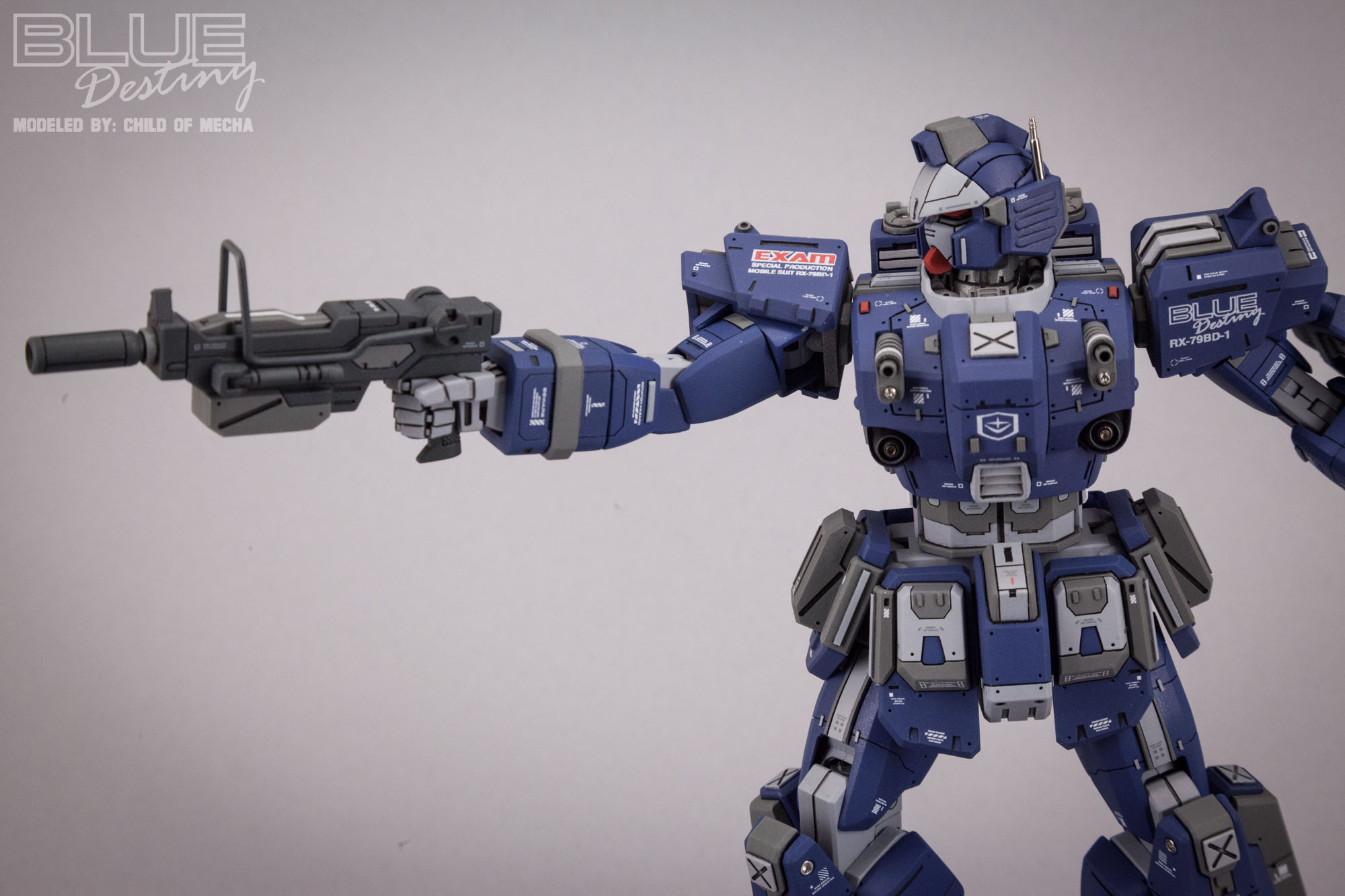 Blue Destiny Refurbished (61).jpg
