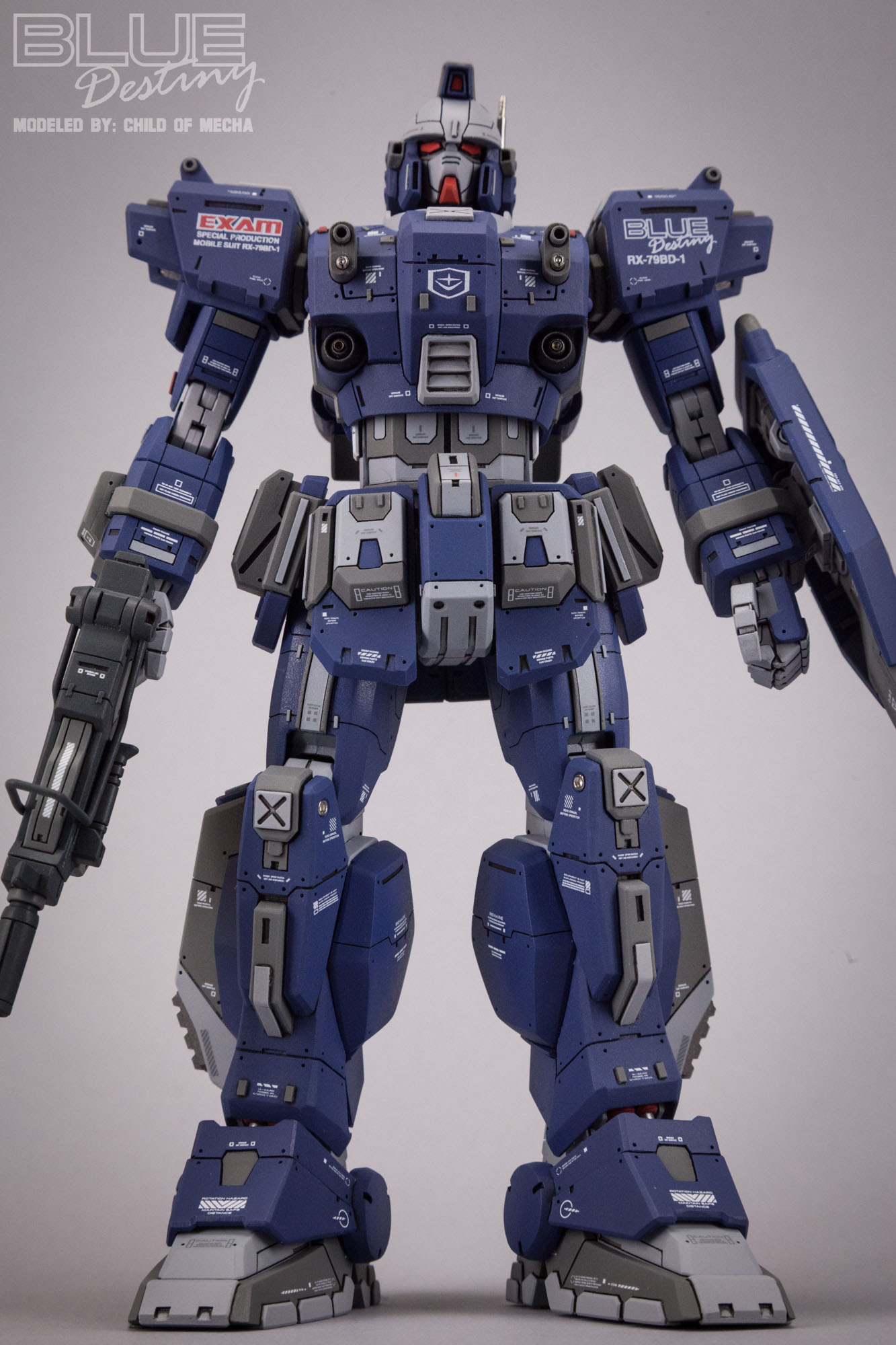 Blue Destiny Refurbished (67).jpg