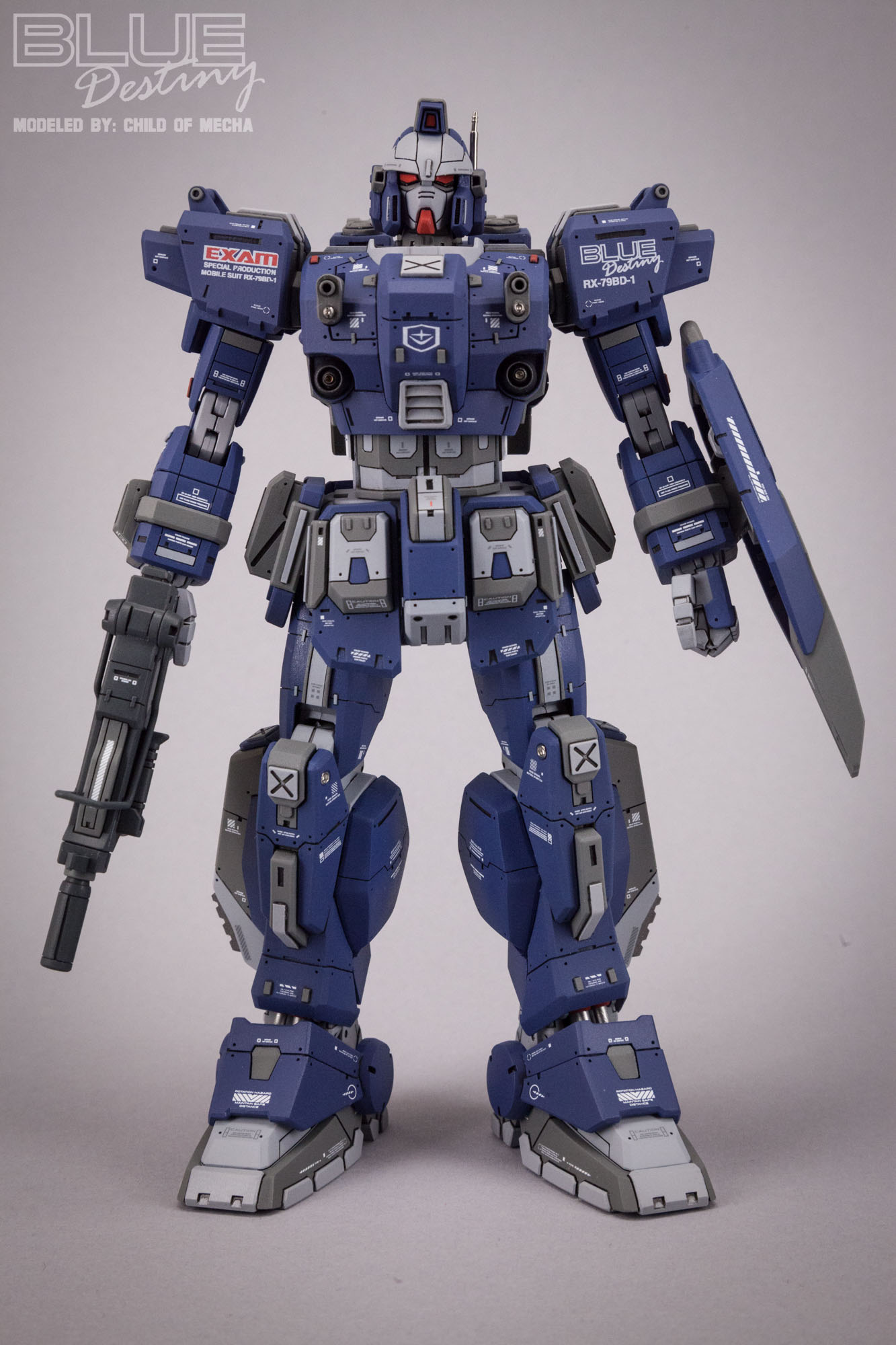 Blue Destiny Refurbished (68).jpg