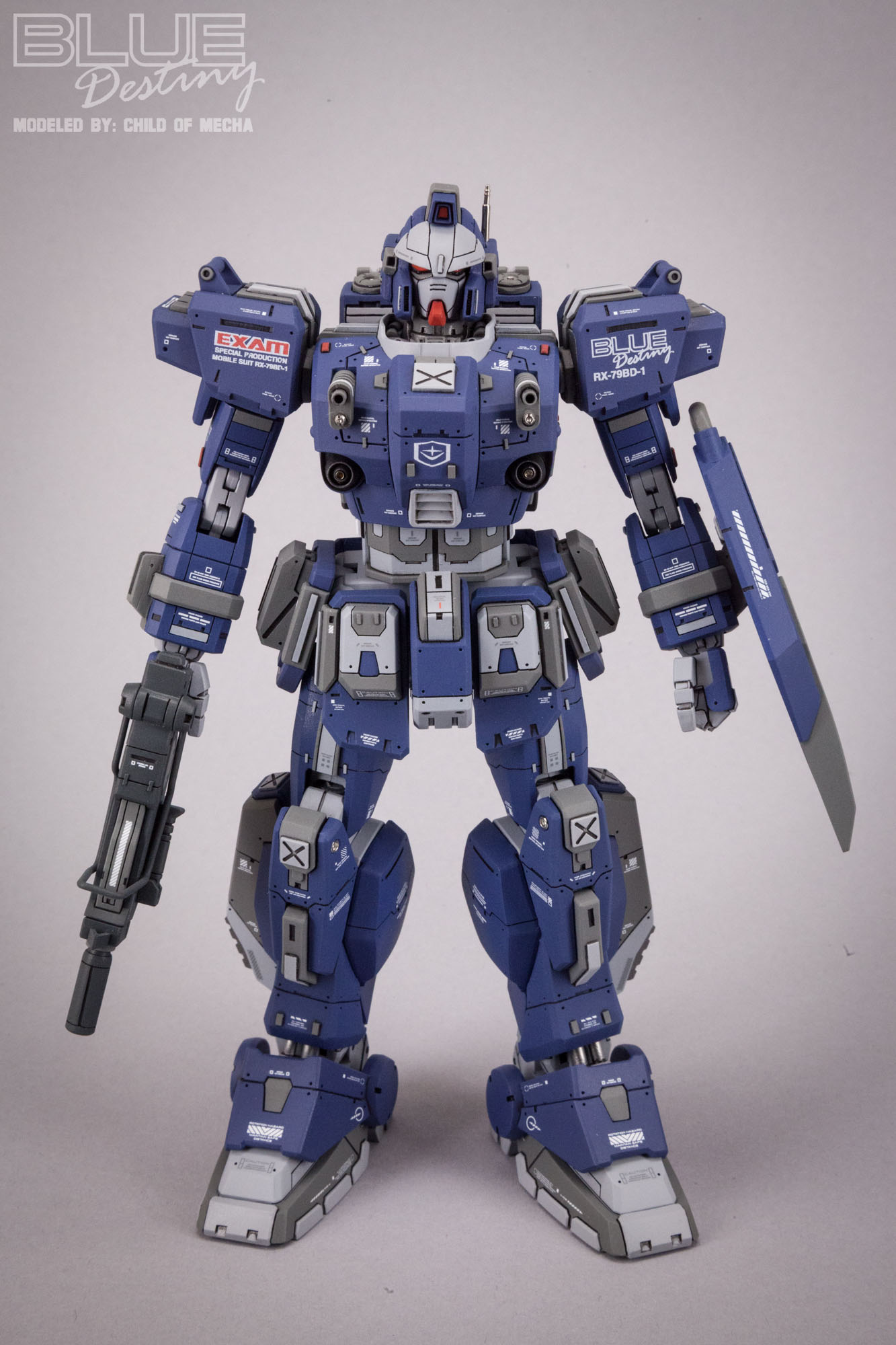 Blue Destiny Refurbished (69).jpg