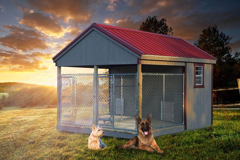 portable-dog-kennels-for-sale.jpg