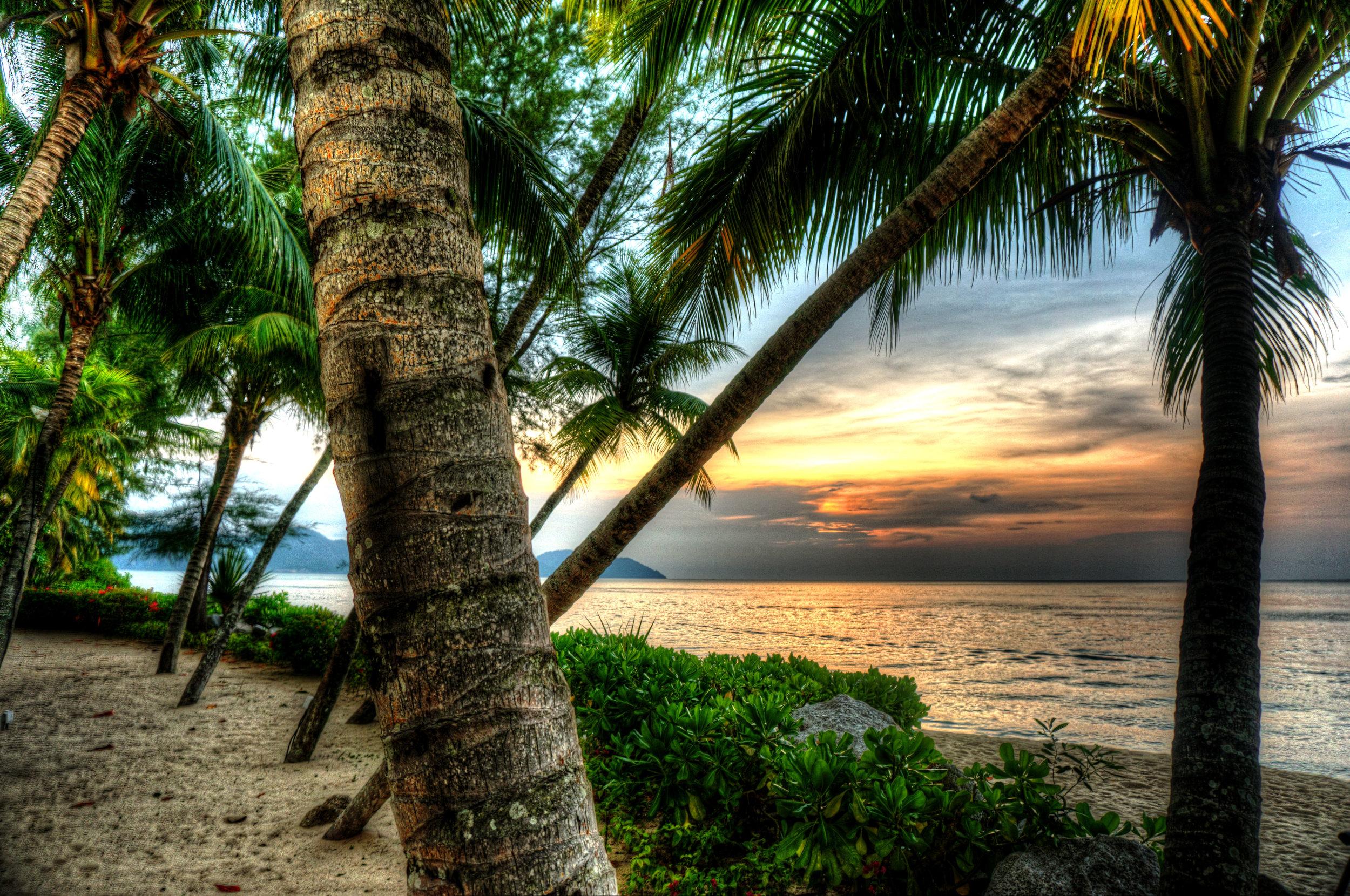 malaysian beach 5 lq.jpg