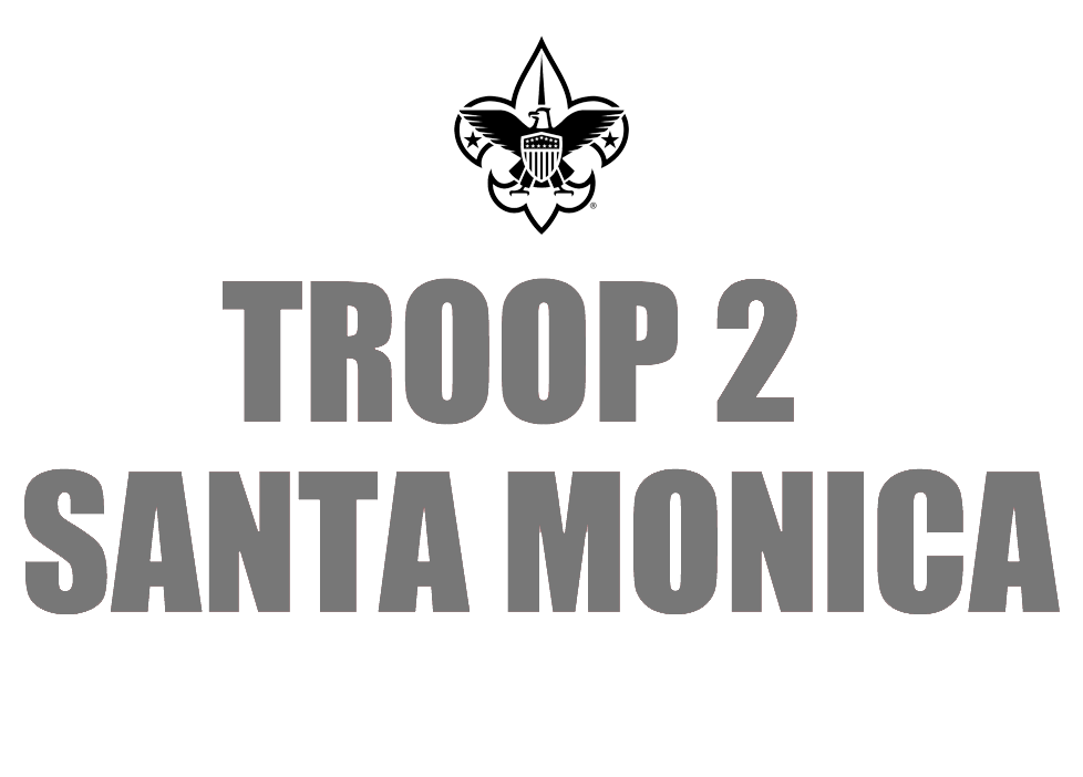 Troop 2 copy.png