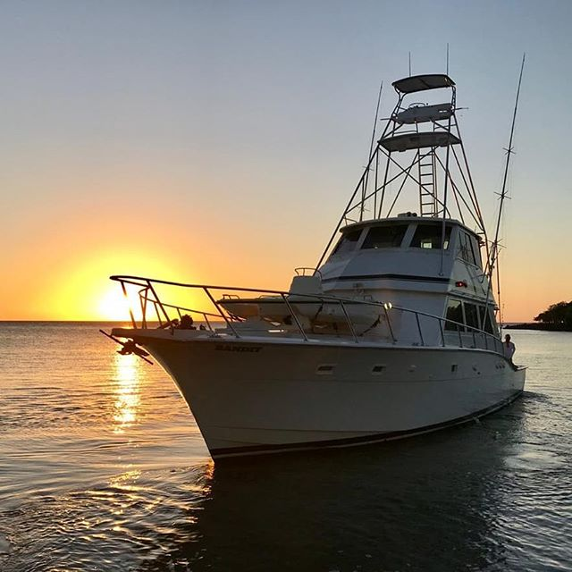 Meet our newest addition to the Ruthless family, Bandit!  She is ready for all your luxurious yachting needs! #ruthlessroatancharters  #hatterasyachts #roatan #roatanfishing