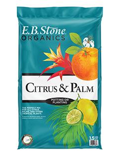 Citrus & Palm