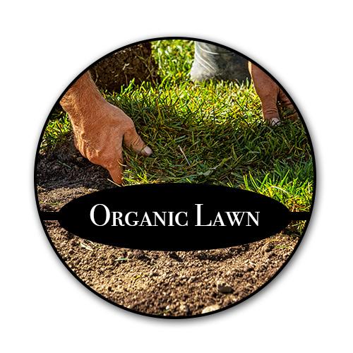 organic-lawn_text.jpg