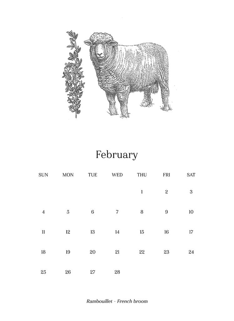 Sheep_Calendar_2018_final4_1024x1024.png