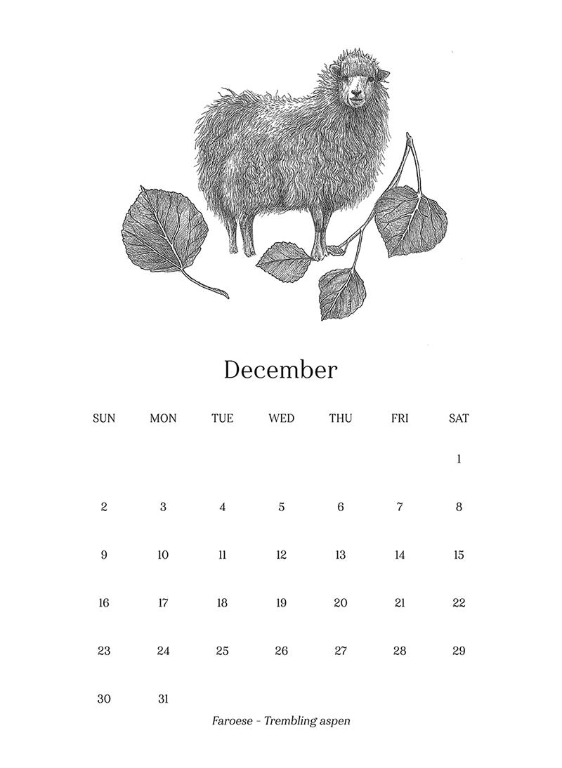 Sheep_Calendar_dec.png