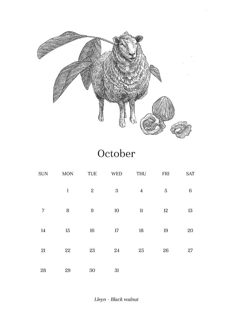 Sheep_Calendar_oct.png