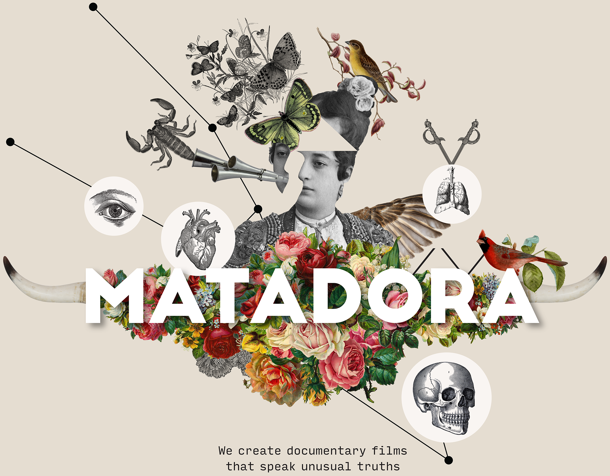Matadora_logo_cream_background_RGB_large_NEW.png