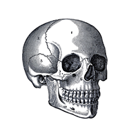 skull_icon_200x200.png