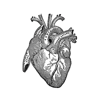 heart_icon_200x200.png