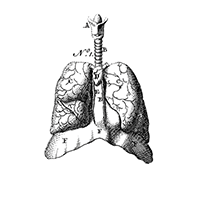 lungs_icon_200x200.png