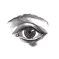 eye_icon_200x200.png