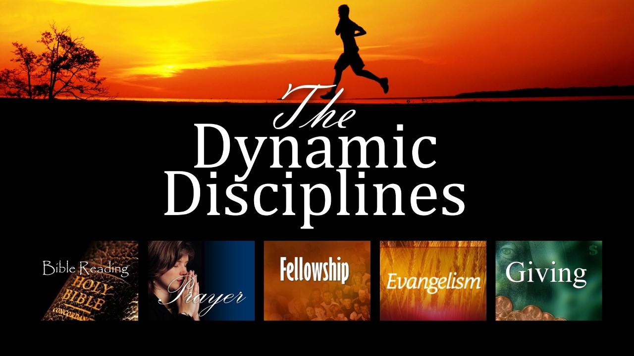 The Dynamic Disciplines thumbnail.jpg
