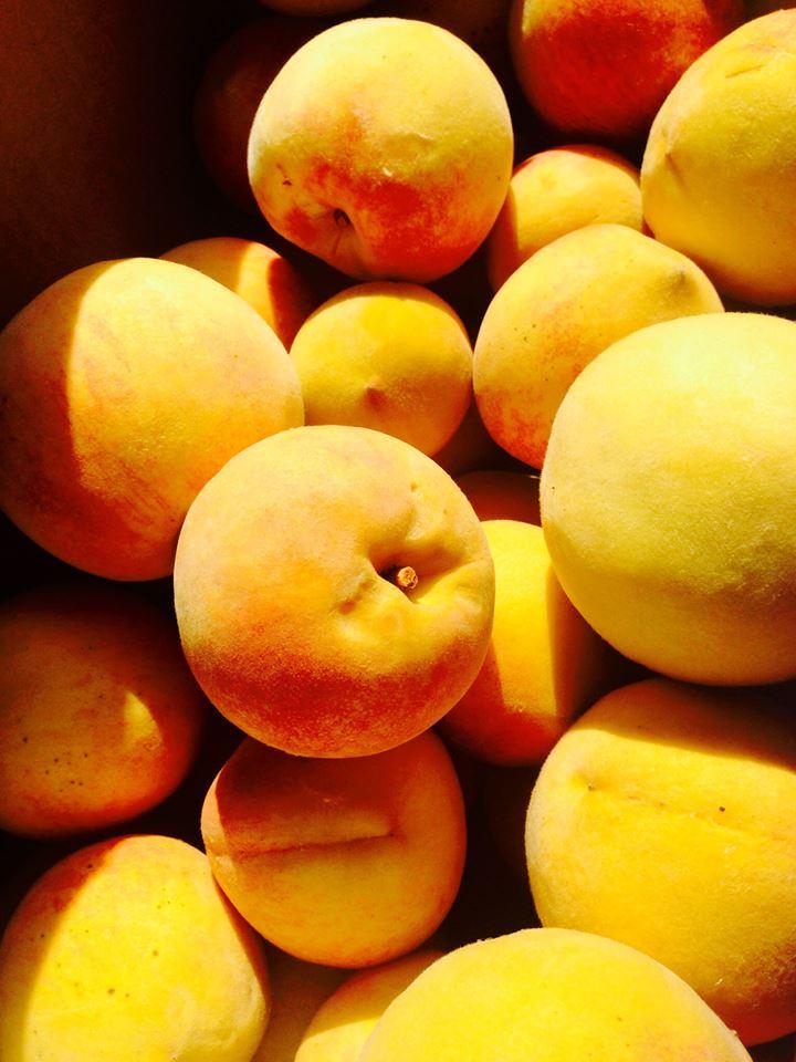 Cherry Creek Peaches