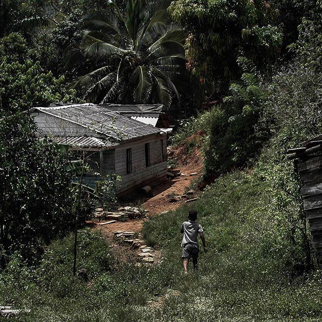 I ran all the way home #ruralcuba #moro #kidsofcuba #sierradelrosario #familyties