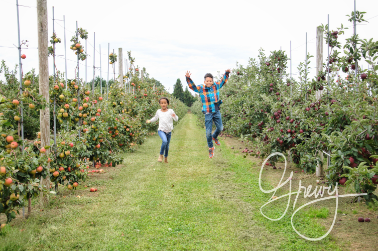 Greivy.com Hamptons Apple Picking - 10.png