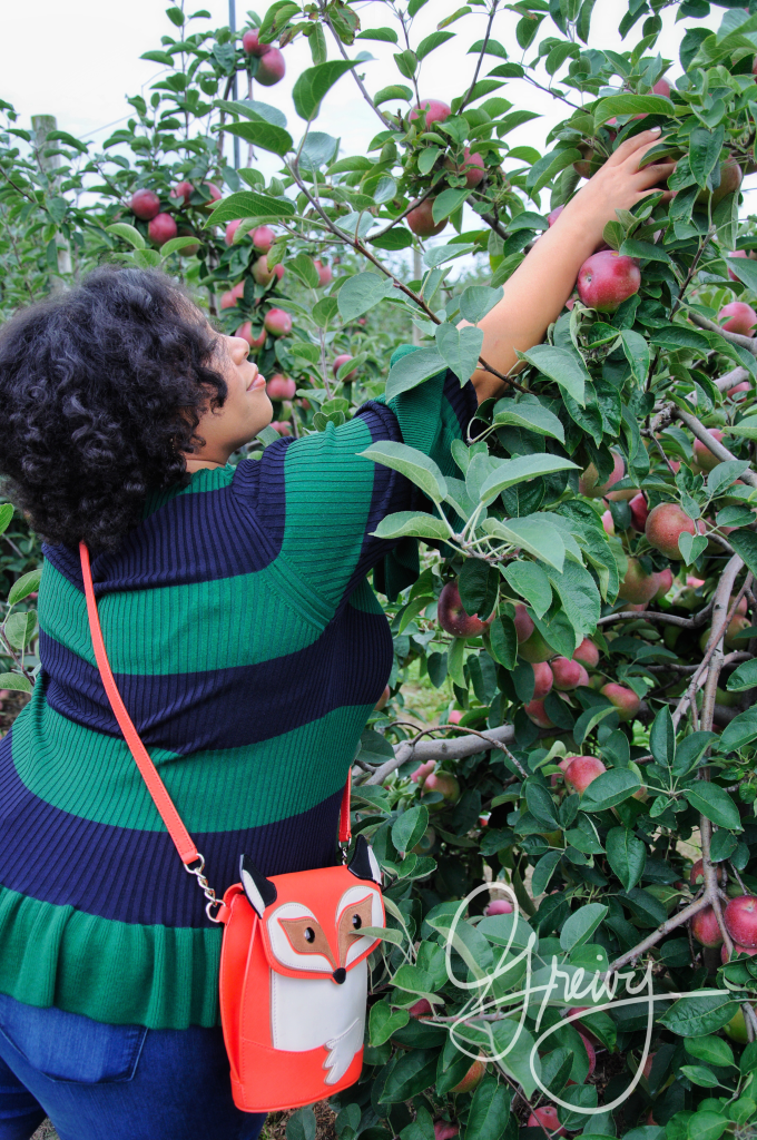 Greivy.com Hamptons Apple Picking - 12.png