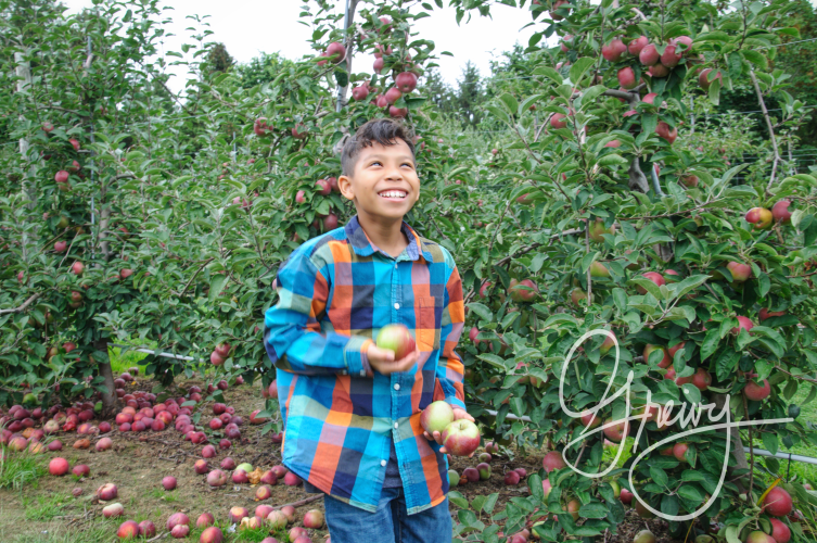 Greivy.com Hamptons Apple Picking - 14.png