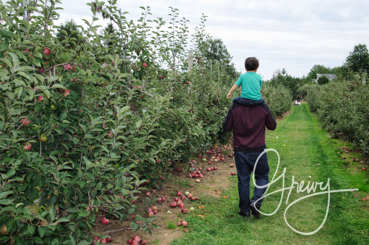 Greivy.com Hamptons Apple Picking - 27.png
