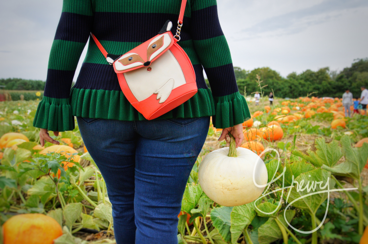 Greivy.com Hamptons Pumpkin Picking - 9.png