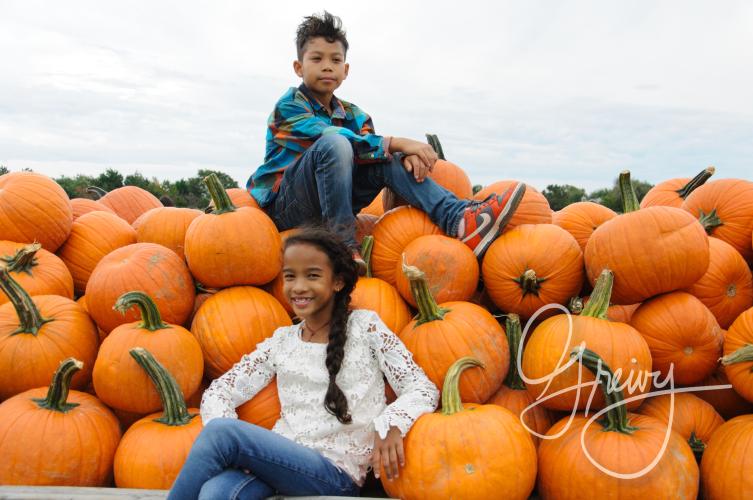 Greivy.com Hamptons Pumpkin Picking - 11.png