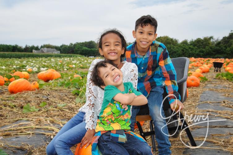 Greivy.com Hamptons Pumpkin Picking - 12.png