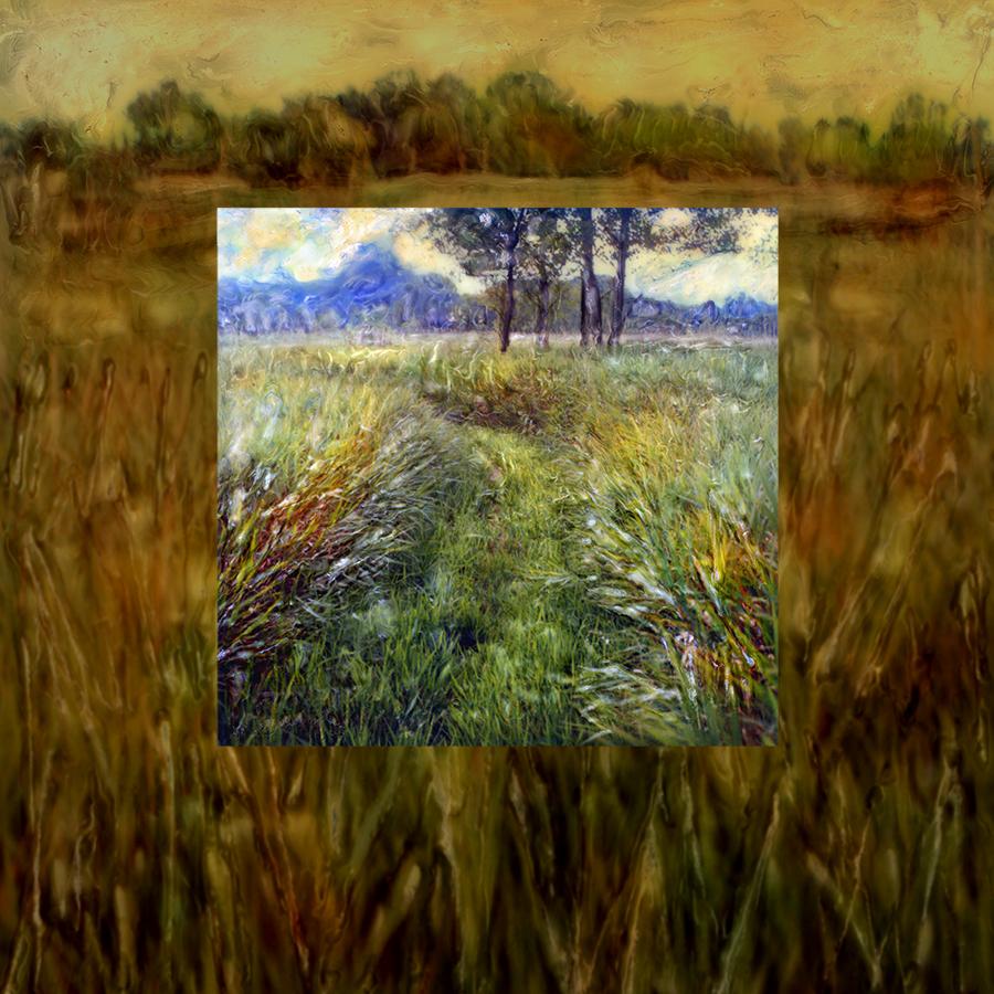 SqSpc LandscapeSeriesNo2BFINAL.jpg