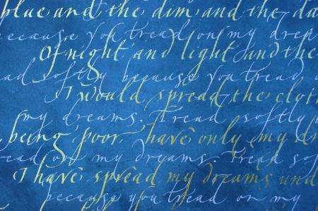 an image cloths of gold Gaynor Goffe.jpg