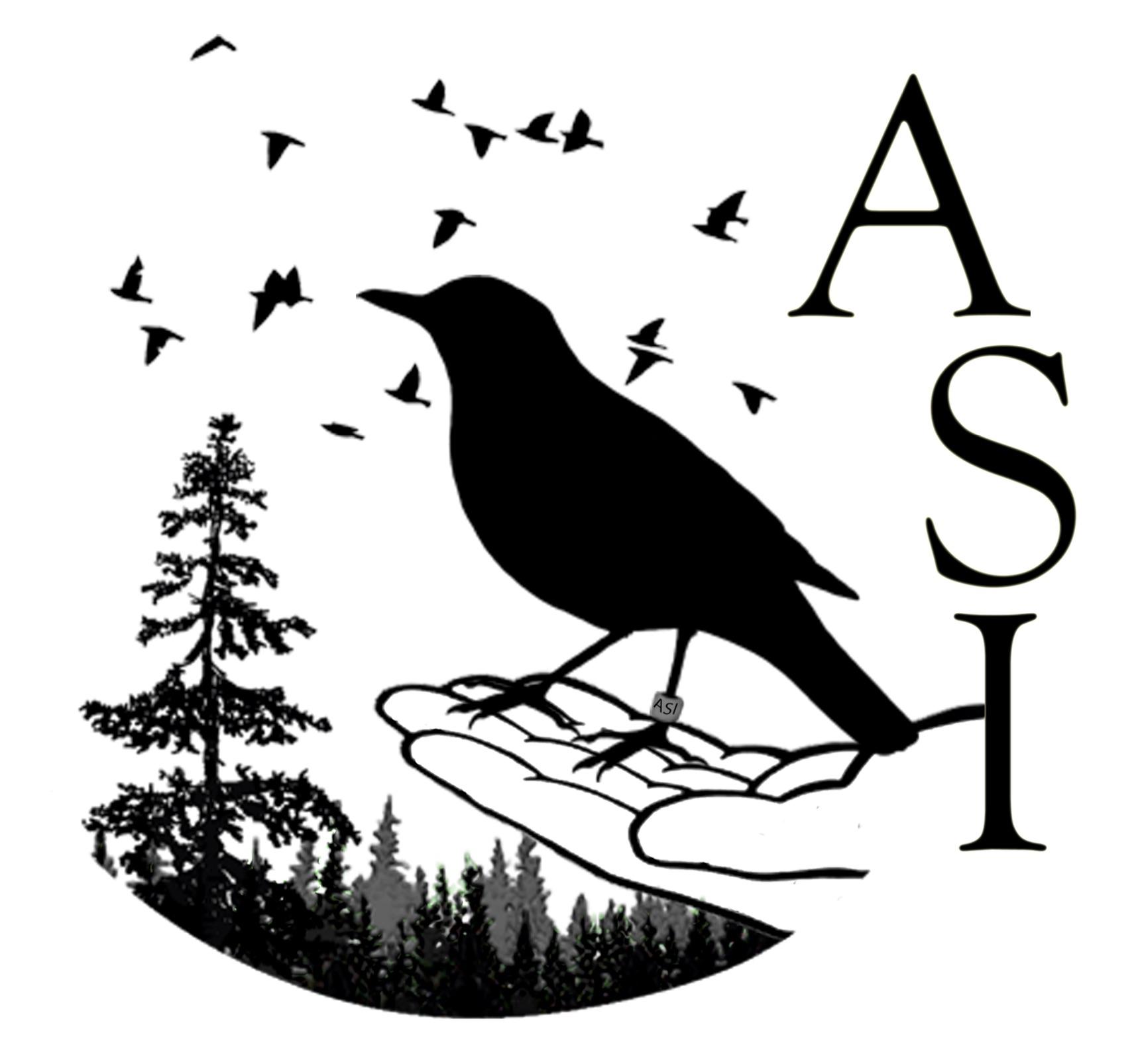 ASI.jpg