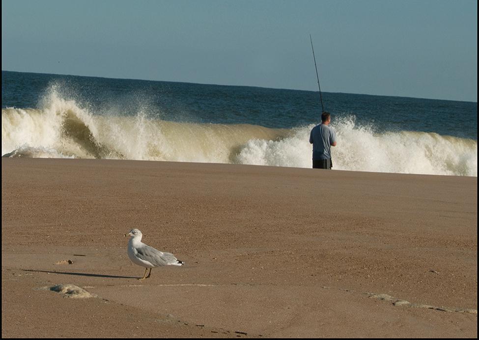 24-AMS_20100918_Beach7_0074-1.jpg