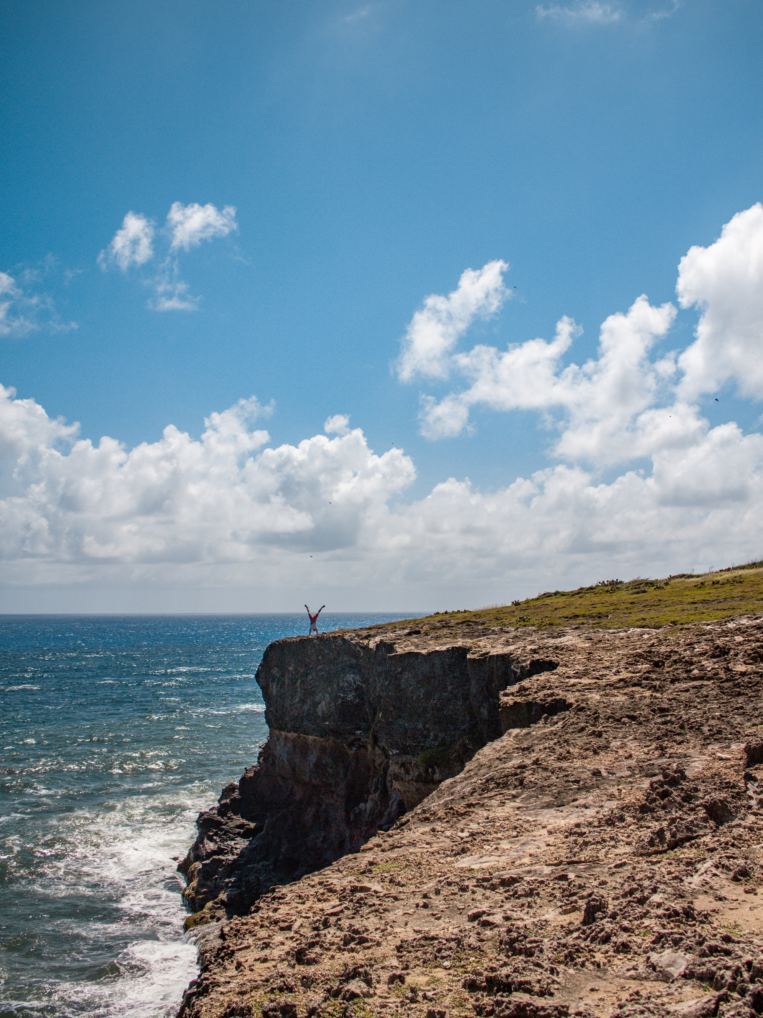 Savane des Petrifications Martinique