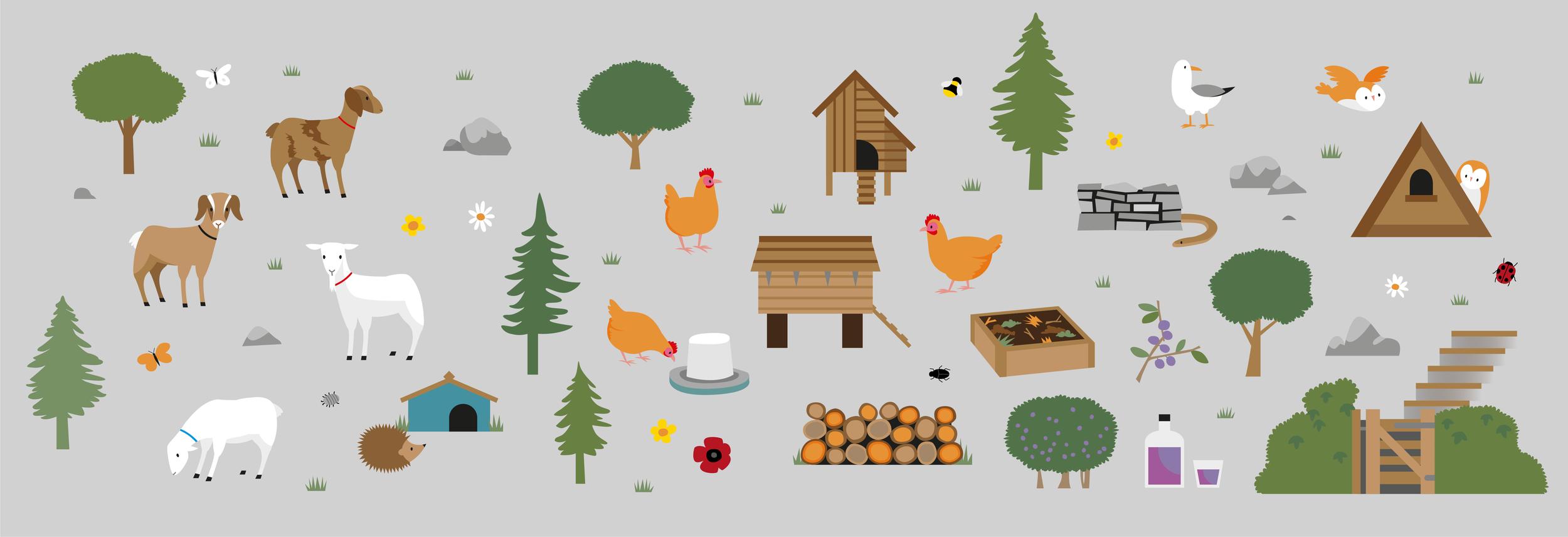 The Park Woodland Map Illustration_SM-06.png