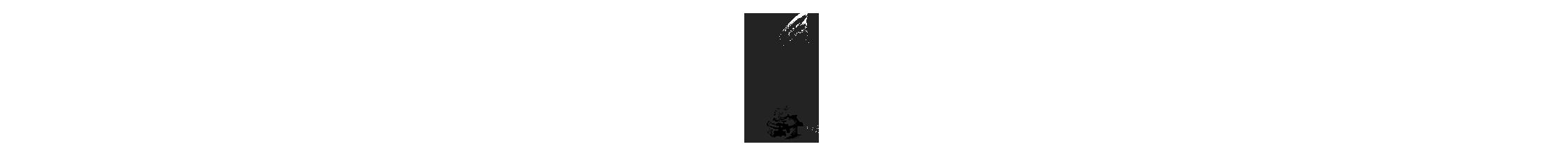 prismawedding ilustracion .png