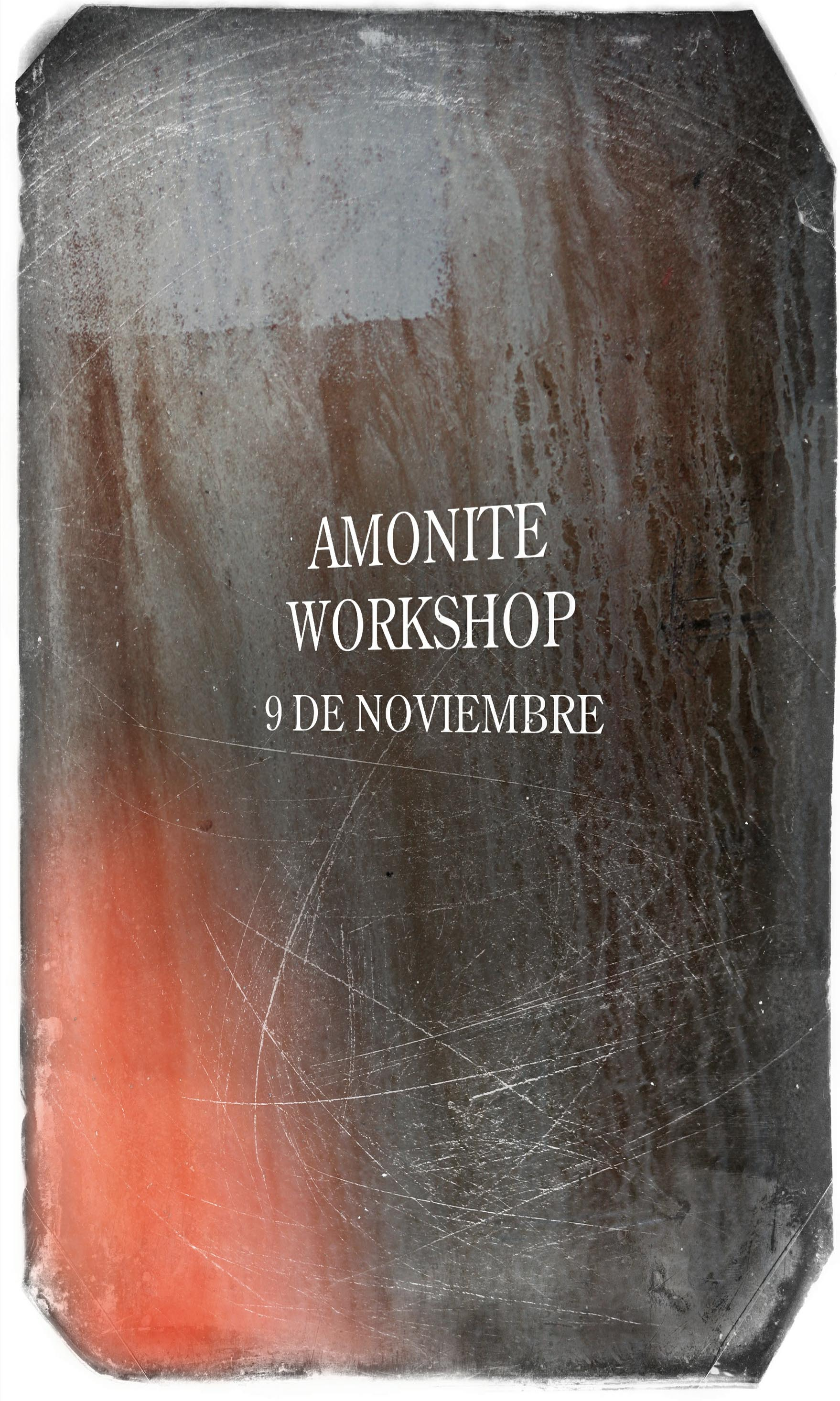 AMONITE WORKSHOP.jpg