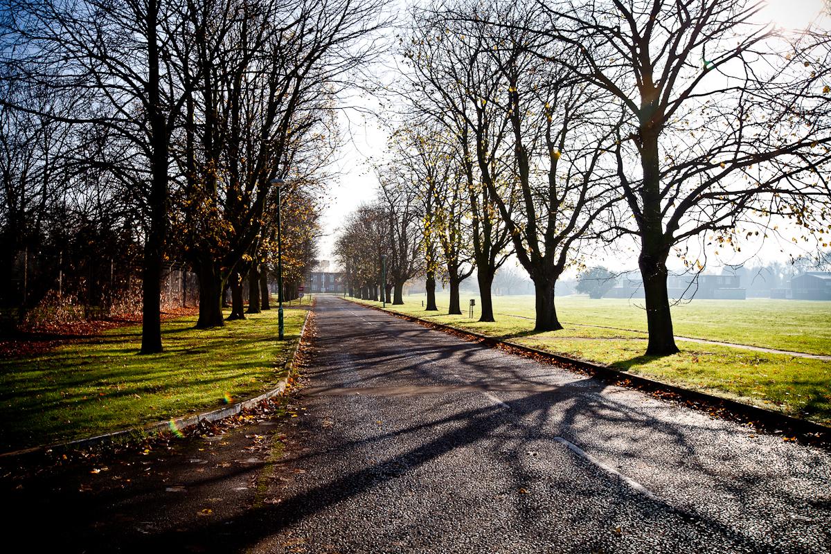 Tree lined avenue Oakington Barracks_Phase 2.jpg
