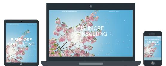 bishmore-responsive-layout.jpg