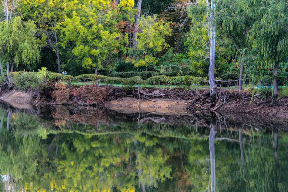 berry-delightful-lake-gardens.jpg