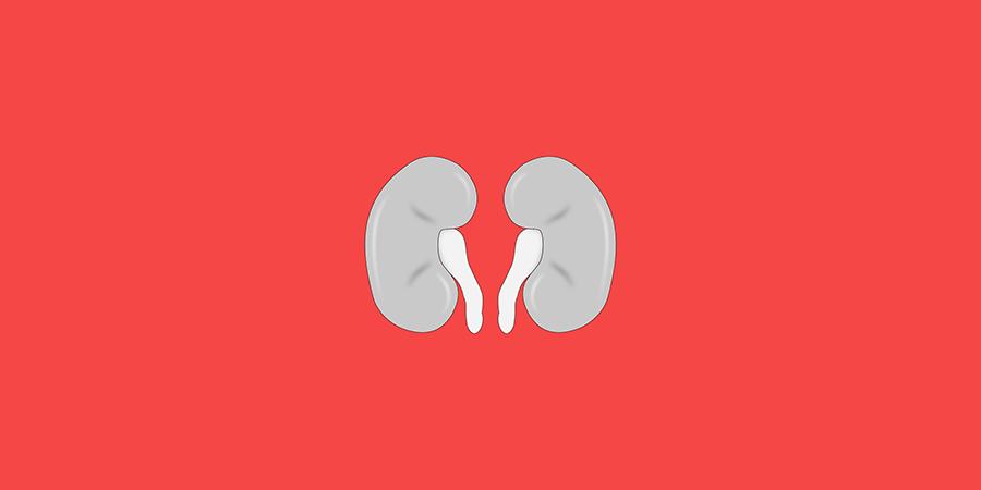Illustration: Pixabay. Design: BOOST Thyroid.